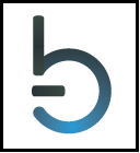 bleecker-logo-blue.b1